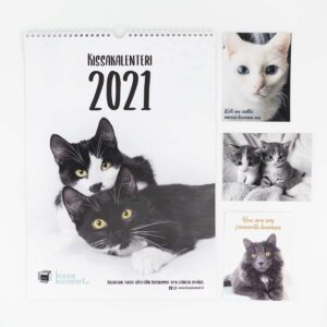 Tuotepaketti: Kalenteri 2021 plus korttipaketti